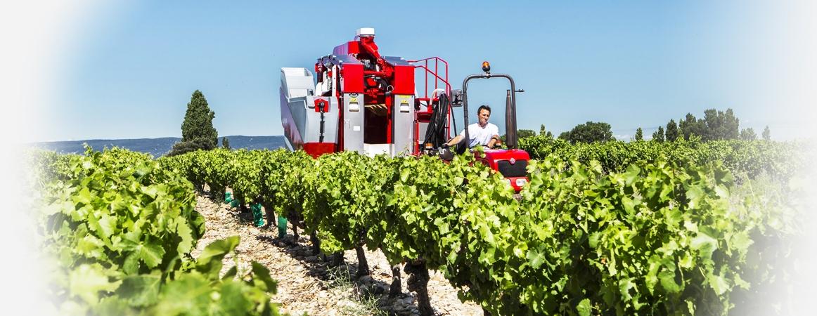 Sélecta 3 Respeto total del vegetal<br>La respuesta práctica y fiable a la recolección de la uva.. Crédits : ©alma-france.com 2016