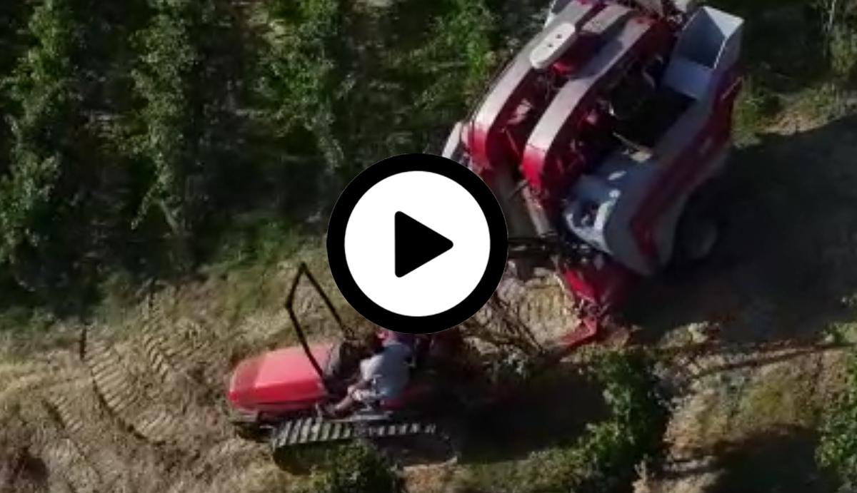 Vidéos tracteur à chenilles Italie avec Sélecta 3 (©alma-france.com 2018)